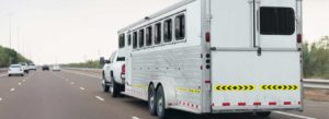One Woman and Two Horses Die in a Series of Collisions in North Florida