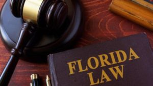 florida right to sue laws